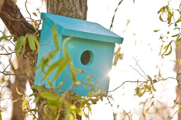 Cuprinol-nest-box