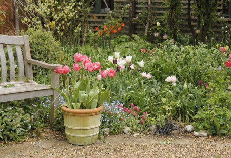 Give your garden an April makeover