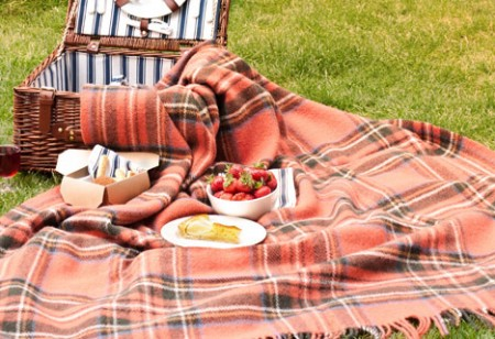 <b> Outdoors: </b> How to plan the perfect picnic