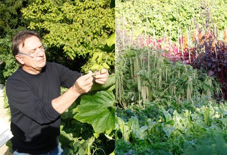 <b> Interview: </b> Cooking up a storm in the garden with chef Raymond Blanc