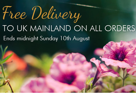 <b>Shopping:</b>Go on and enjoy free delivery at ACHICA all this weekend
